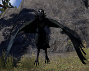 Harpy Wrothgarian (Online)