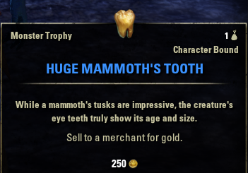 Huge Mammoth's Tooth