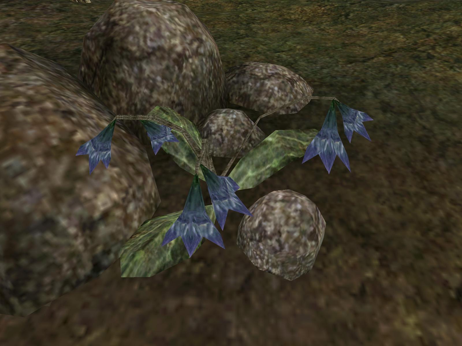 Лепестки каменевки
