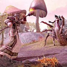 The Elder Scrolls Online 0.jpg