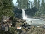 Alchemist's Camp: Evergreen Woods