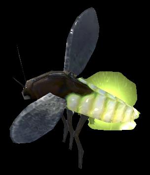 Torchbugs (Online)