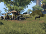 Forest Mounts