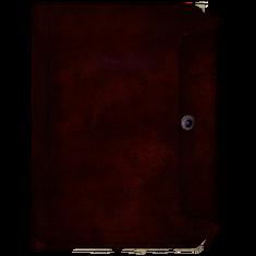 Дневник, обложка 5.png