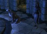 Brelyna dog