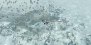 Gospodarstwo Radosnych i Pięknych (mapa) (Skyrim)