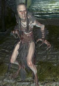 Wiedźmokruk (Skyrim)
