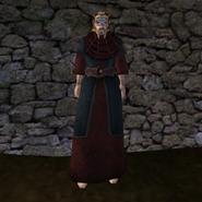 Простая Мантия 7 (Morrowind) (муж)