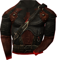 TESV Shrouded Armor