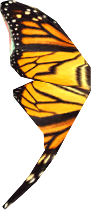 Butterfly Wing (Skyrim)