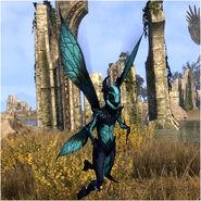 Turquoise Nixad (Online)
