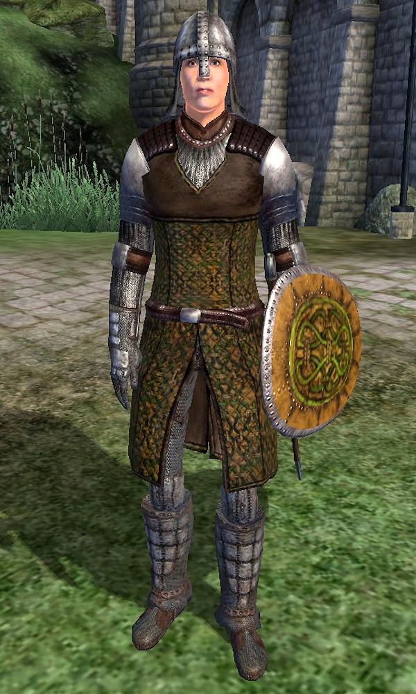 Cheydinhal Soldier