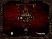 Tribunal banner
