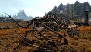Drago scheletrico (Skyrim)
