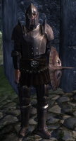 Imperial soldier(oblivion)