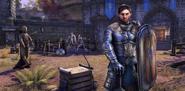Meet the Character Commander Varian