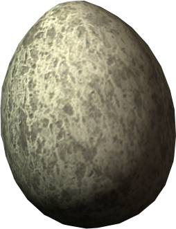 Chicken's Egg