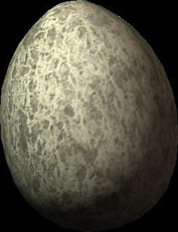 Uovo di gallina