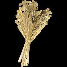Пшеница.png