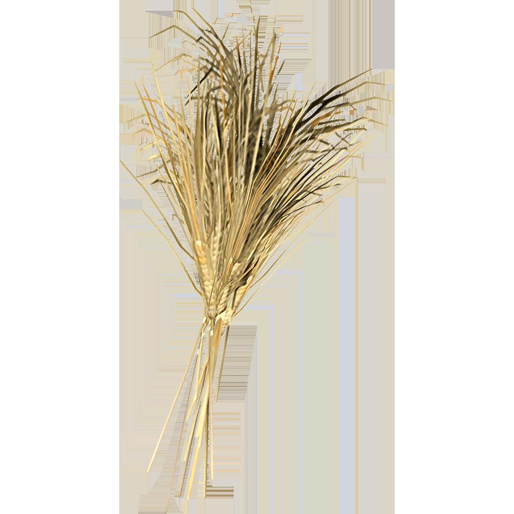 Пшеница (Skyrim)