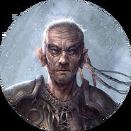 Bosmer avatar 4 (Legends)