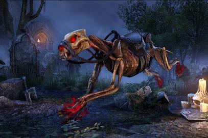 Skeletal Senche