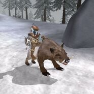 Riekling jeźdźca (Morrowind)