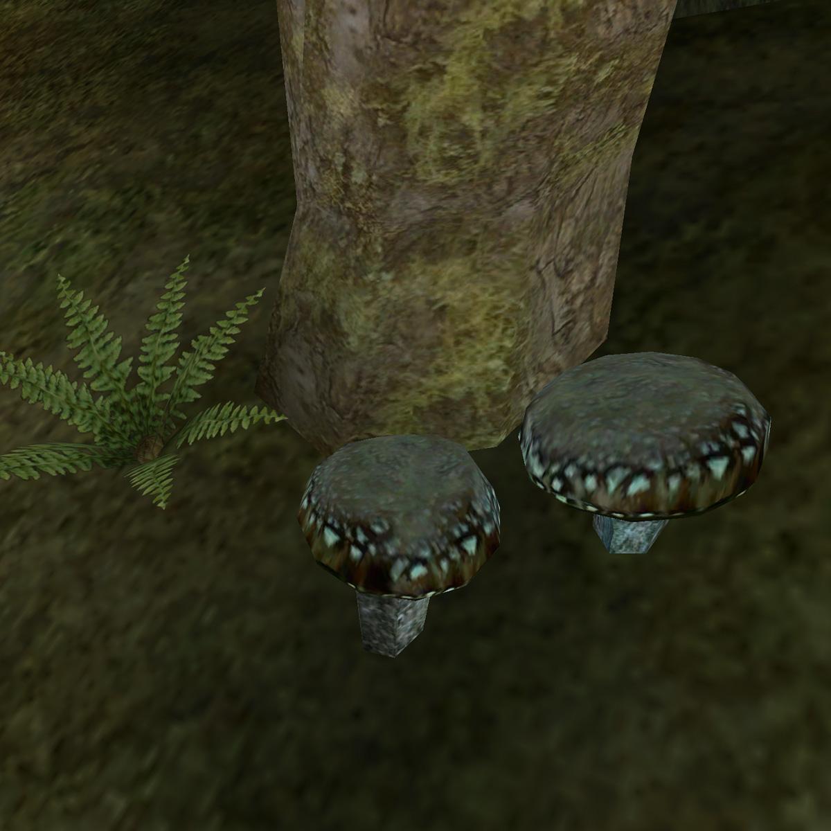 Светящаяся сыроежка (Morrowind)