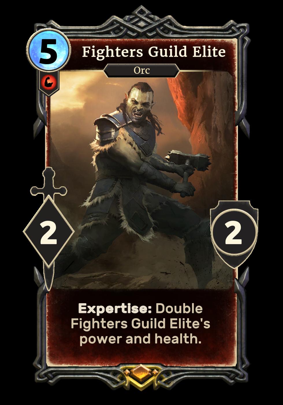Fighters Guild Elite
