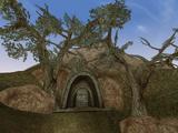 Venim Ancestral Tomb (Morrowind)