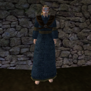 Простая Мантия 16 (Morrowind) (муж)
