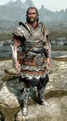 Imperial Armor Male