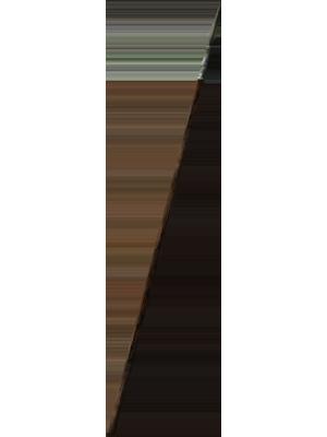Iron Flameskewer