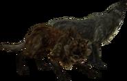Wilk alfa i wilk lodowy - ekran ładowania (Skyrim)