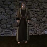 Простая Мантия 17 (Morrowind) (муж)