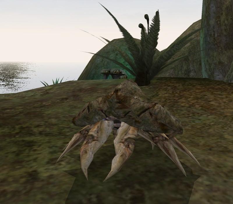 Грязекраб (Morrowind)