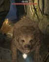 Cave Bear (Blades).png