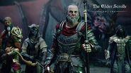 The Elder Scrolls Online Elsweyr – Tráiler para The Game Awards 2019