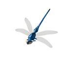 Синяя стрекоза (Skyrim)
