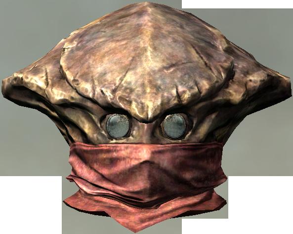 Chitin Heavy Helmet