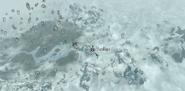 Forelhost (mapa) (Skyrim)