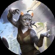 Khajiit avatar bob 1 (Legends)