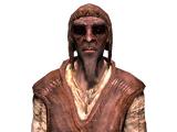 Босмеры (Skyrim)