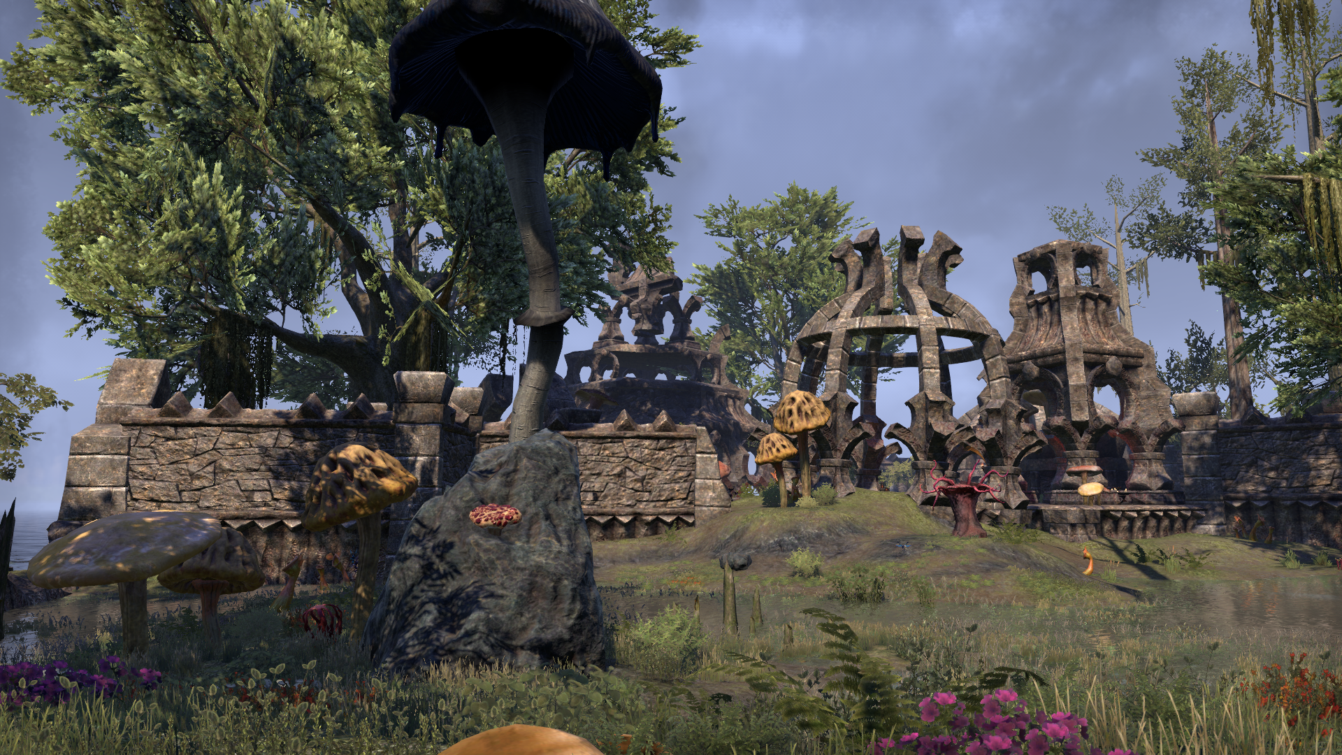 Ашурнибиби (Online: Morrowind)