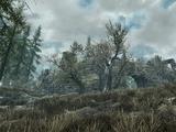 Руины Кьенстаг (Skyrim)