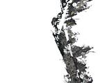 Emperor Parasol Moss