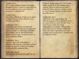 Guild Mage's Journal
