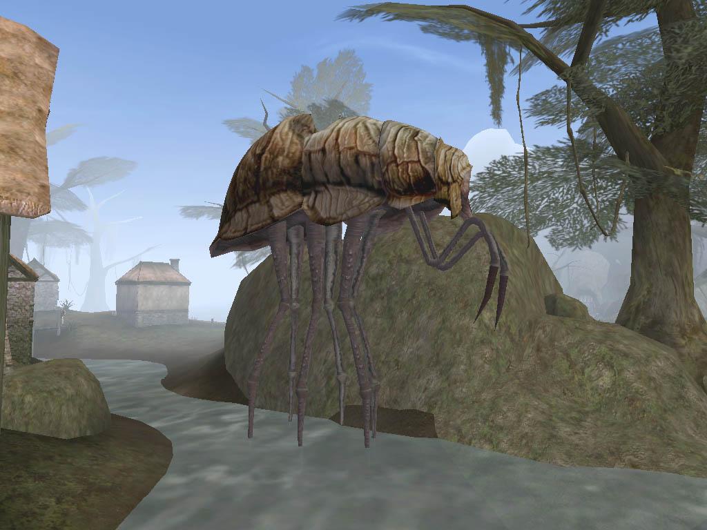 Zancudo del cieno (Morrowind)