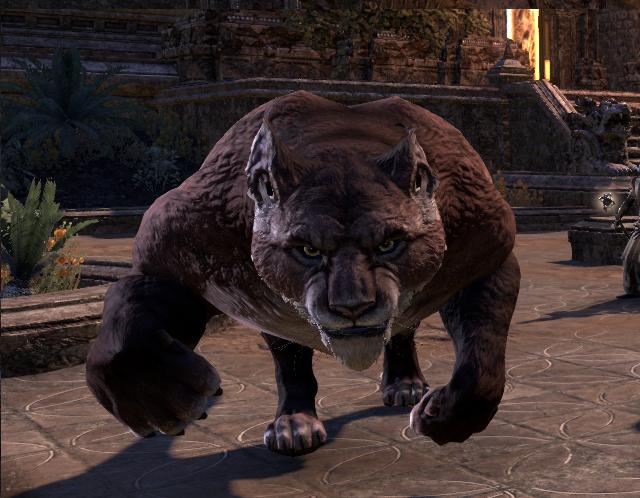 Alkosh's Roar