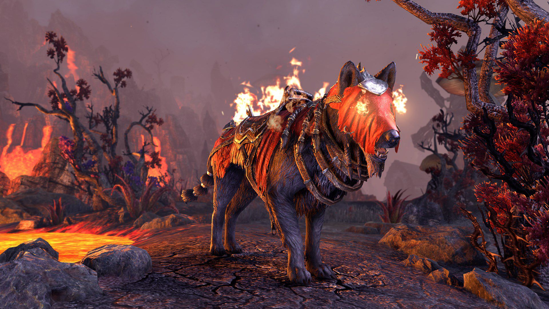 Dragonfire Wolf